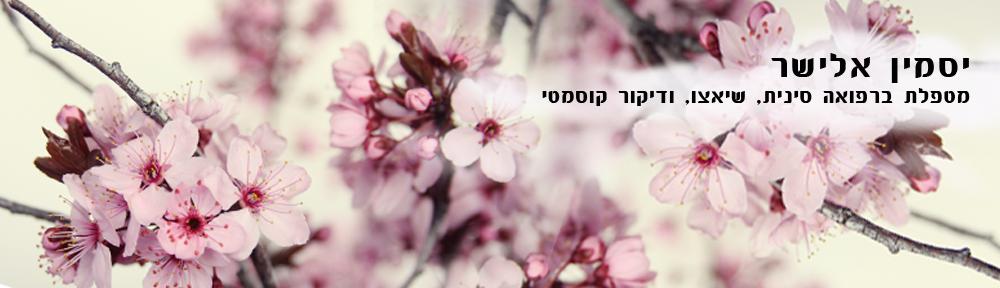 יסמין אלישר